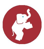 AgileThinking - Elephants Can Dance